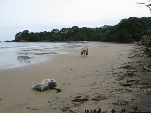 One of my favourite jobs - collecting seaweed