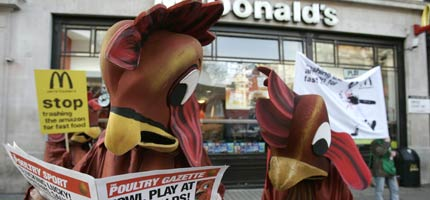chickens-and-mcdonalds