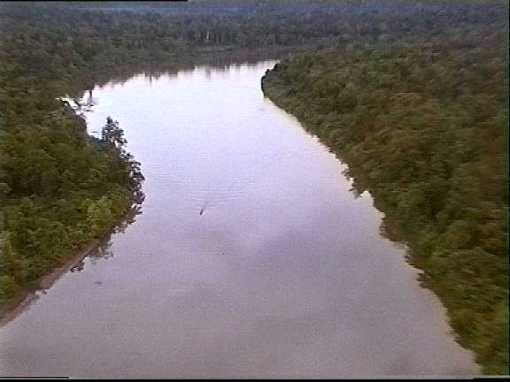 The Fly River