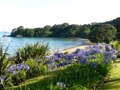 Our End of Beautiful Coopers Beach. It is Paradise.
