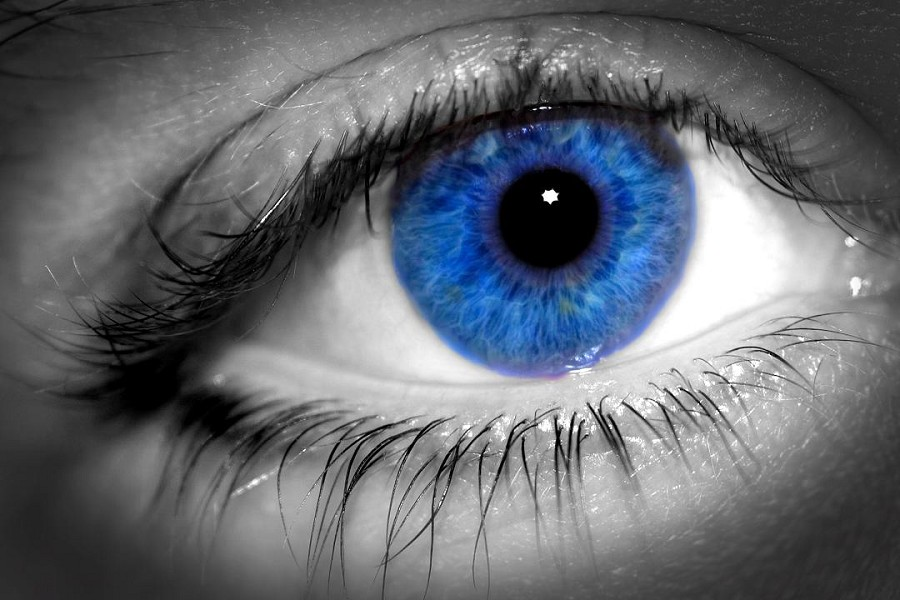 Seven Steps To Improve Your Vision