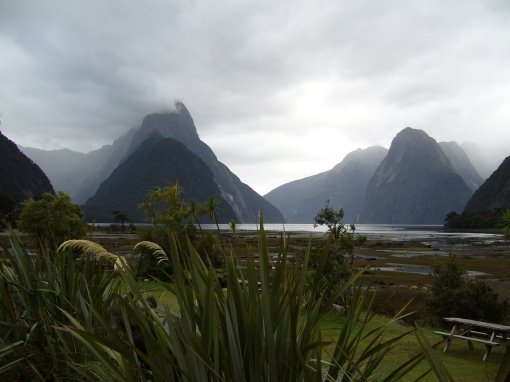 Milford Sound. It doesn't get much more beautiful than this!