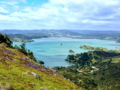 View over Whangaroa Harbour