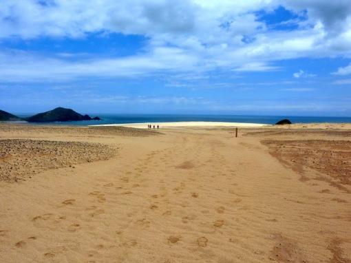 Dunes down to the beach below Cape Maria van Diemen